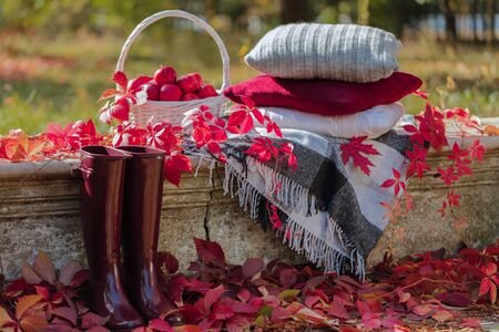 Autumn garden. On the stone bench there is a blanket, pillows, a basket of apples and a burgundy hat with rubber boots. Selective focus. 免版税图像