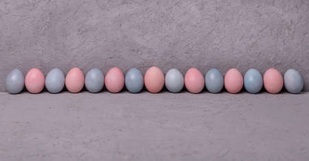 Pattern of chicken painted pink and blue Easter eggs on gray background