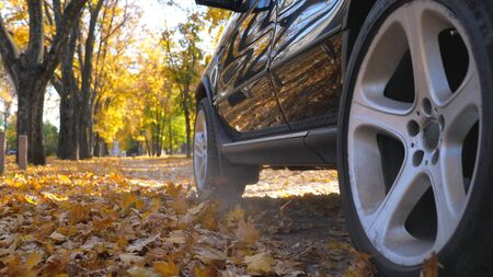 Black SUV driving fast through street leaving track with dust and flying yellow foliage behind. Powerful car riding along urban autumn park at sunny day. Scenic autumnal environment. Low angle view Stock Photo