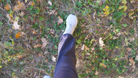 Point of view to male feet in sneakers steps along path outdoor. Legs of young guy goes on dry grass at early autumn. Guy walks at wild nature. Slow motion Imagens - 154676695