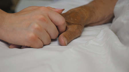 Girl takes and gently touches hand of sick mature woman lying in bed hospital. Imagens - 157499404