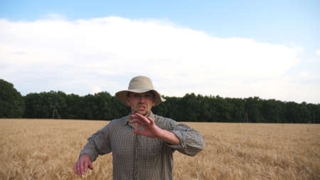 Young annoyed agronomist running to camera through the wheat field and trying to catch somebody. Angry farmer jogging among cereal meadow and tries to kick out someone from plantation. Front view
