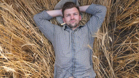 Close up of young agronomist laying on barley stalks and resting at barley meadow. Male farmer lying on wheat stems and relaxing at cereal field. Concept of agricultural business. Slow motion