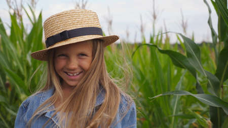 Small funny girl in straw hat looking into camera and laughs covering her face with hand on corn field. Portrait of happy little kid playing with her long blonde hair and straightening her straw hat.