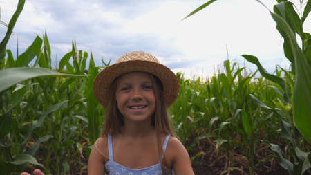 Beautiful small girl in straw hat going to the camera through corn field. Happy cute kid with long blonde hair walking over the maize plantation. Little child spending time at meadow. Close up Imagens