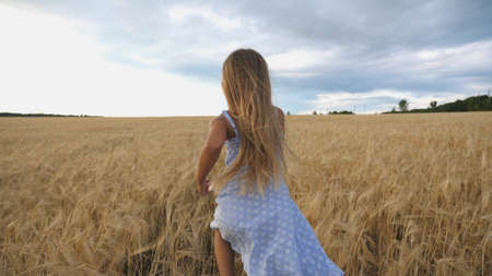 Follow to cute happy child in dress running through wheat field, turning to camera and smiling. Beautiful girl with long blonde hair jogging over the meadow of barley at overcast day. Slow motion Imagens - 154242944