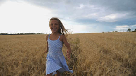 Close up of happy girl with long blonde hair running to the camera through barley field. Little smiling kid jogging over the wheat meadow. Cute child spending time at golden plantation. Slow motion Imagens