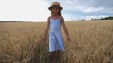 Close up of beautiful small girl with long blonde hair walking through wheat field. Cute child in straw hat touching golden ears of crop. Little kid in dress going over the meadow of barley Imagens - 154259587