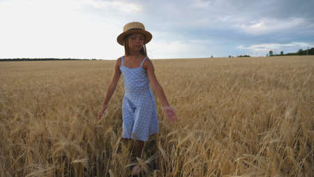 Beautiful small girl with long blonde hair touching golden ears of wheat while walking through field. Little kid in straw hat going over the meadow of barley. Cute child spending time at plantation.