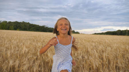 Close up of happy girl with long blonde hair running to the camera through barley field. Little smiling kid jogging over the wheat meadow. Cute child spending time at golden plantation. Slow motion Imagens - 154259613