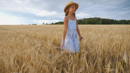 Close up of beautiful small girl with long blonde hair walking through wheat field. Cute child in straw hat touching golden ears of crop. Little kid in dress going over the meadow of barley Imagens