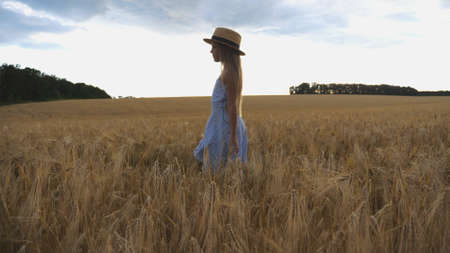 Close up of beautiful small girl with long blonde hair walking through wheat field. Cute child in straw hat touching golden ears of crop. Little kid in dress going over the meadow of barley Imagens - 157499413