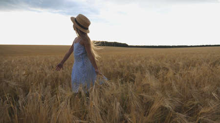 Close up of beautiful small girl with long blonde hair walking through wheat field. Cute child in straw hat touching golden ears of crop. Little kid in dress going over the meadow of barley Imagens - 157499415