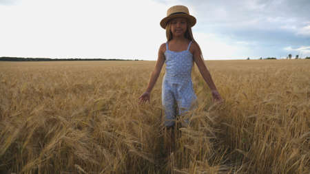 Close up of beautiful small girl with long blonde hair walking through wheat field. Cute child in straw hat touching golden ears of crop. Little kid in dress going over the meadow of barley Imagens - 157499417