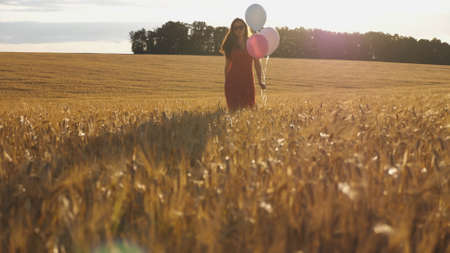 Young woman with brown hair walking through golden wheat field with balloons in hand. Beautiful girl in red dress going among barley plantation with sunlight at background. Freedom concept