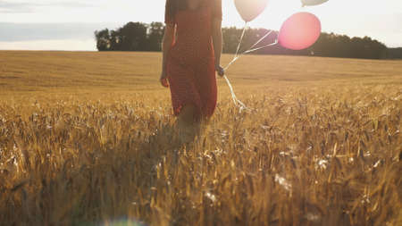 Young woman with brown hair walking through golden wheat field with balloons in hand. Beautiful girl in red dress going among barley plantation with sunlight at background. Freedom concept Imagens - 157499436