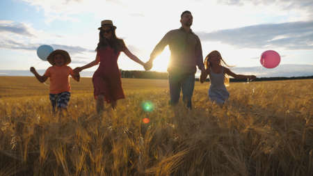 Young mother and father with kids holding hands of each other and jogging among barley meadow at sunset. Happy family with two children running through wheat field and enjoying nature together. Imagens - 157508596
