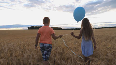 Small girl and boy holding balloon in hands and walking through wheat field at sunset. Couple of cute little kids going among barley plantation at overcast day. Concept of child love. Slow motion