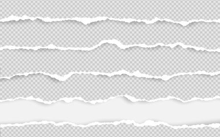 Horizontal torn paper edge. Ripped squared horizontal white paper strips. Vector illustration.