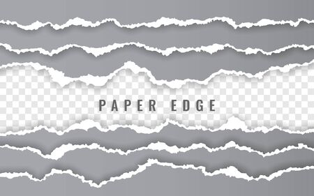 Torn paper edge. Ripped squared paper strips. Vector illustration. Ilustracja