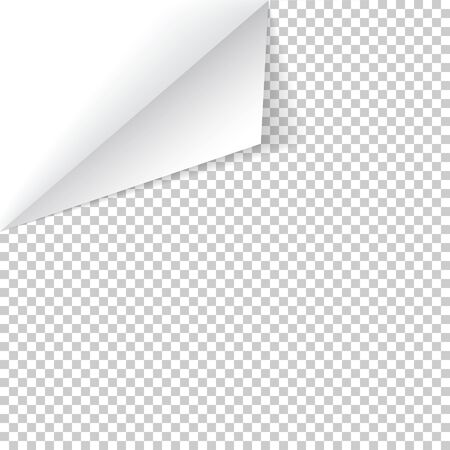 Sheet of paper with curled corner and soft shadow, template for your design. Vector illustration.