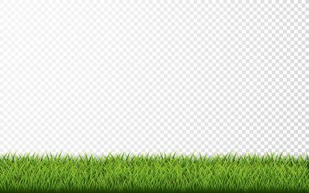 Green grass border set on transparent background. Vector Illustration. Archivio Fotografico - 139289398