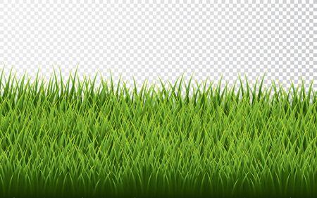Green grass border set on transparent background. Vector Illustration. Archivio Fotografico - 139219187