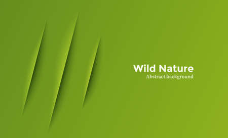 Animal claw scratch on green background. Wildlife vector banner 일러스트