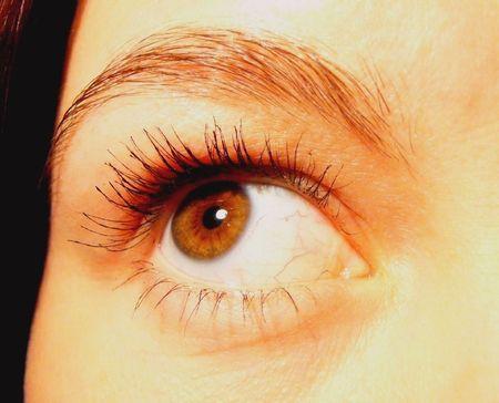 close-up girls brown almond-shaped eye