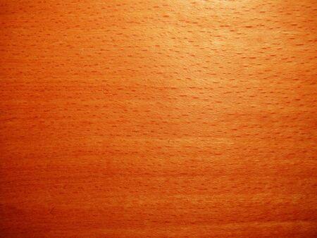 texture of beech wood  Banco de Imagens