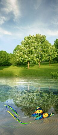 summer landscape with butterfly kite, blooming horse-chestnuts, water & sky photo