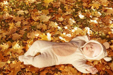 cute baby dressed in fancy dress like little bear, sleeping on yellow autumn leaves photo