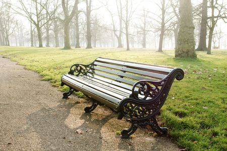 bench in park, fog, morning lightening photo