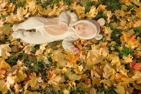 cute baby dressed in fancy dress like little bear, sleeping on yellow autumn leaves