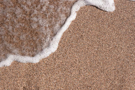 Background of a sandy beach with a sea wave. Foam from a wave on the sand. A foamy ocean wave on a seashell beach
