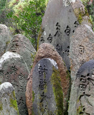 Stones with ancient hieroglyphs. Inscribed historical rocks overgrown with moss