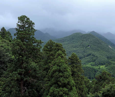 Gloomy clouds hung over the wooded mountains. Thick fog in the mountains