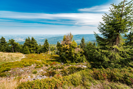 Mountain trails in Krkonose Mountains