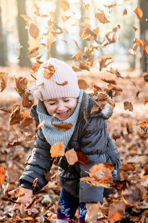 child is playing with leaves that have fallen from the tree Zdjęcie Seryjne