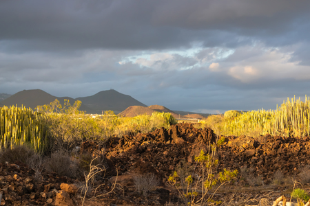 View at the far away mountains with the golden sunset light, Tenerife, Canary islands, Spain - Image