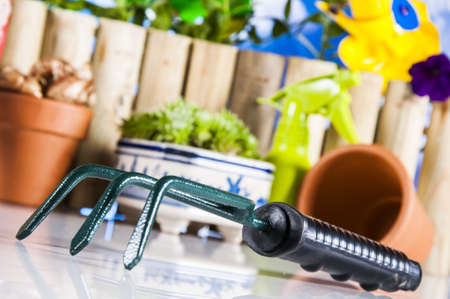 Gardening stuff with vivid colors and blue background photo