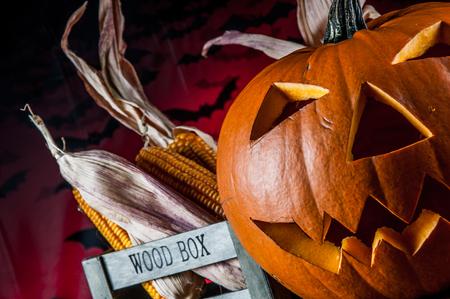 atmospheric: Halloween pumpkin in atmospheric light Stock Photo