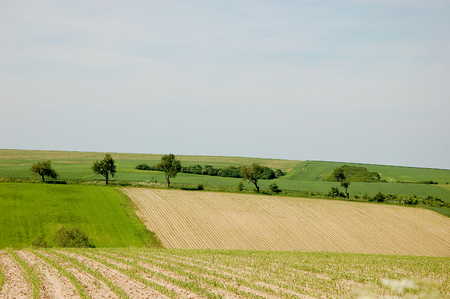 Beautiful southern Poland landscape photo