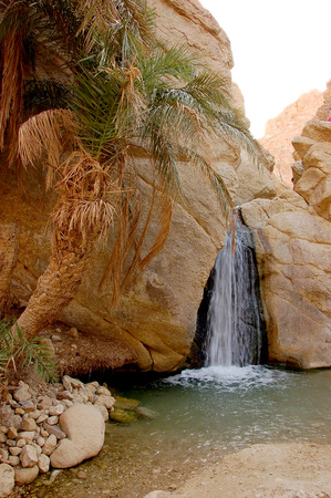mountain oasis: Beautiful mountain oasis in Tunisia