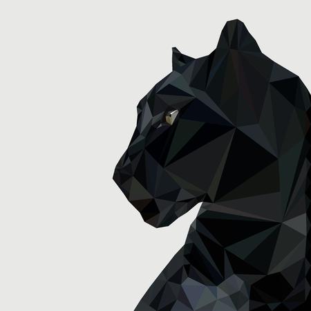 Panther na niskim poziomie
