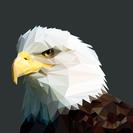 Bald eagle head vector lowpoly in profile Illustration