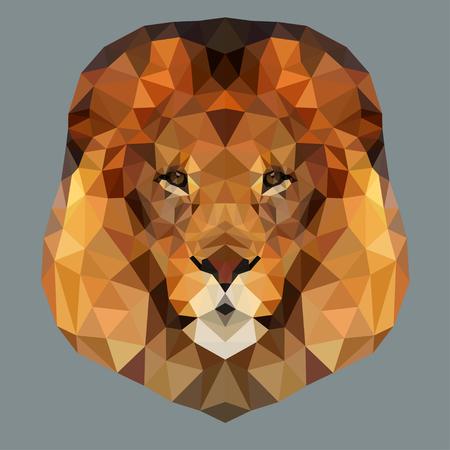 royal safari: Lion head low