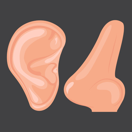Human ear and nose, Vector illustration design icon Ilustrace