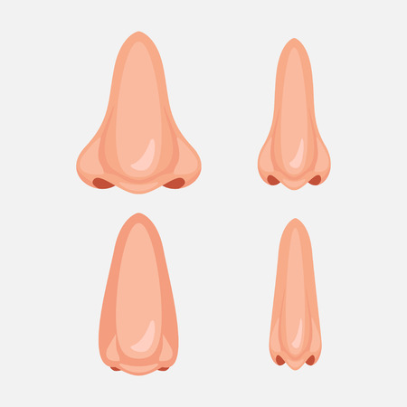 Human nose, Vector illustration set icon design