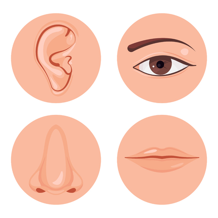 Human nose, ear, mouth and eye set, Vector illustration design icon